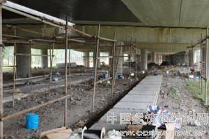 深圳专业碳纤维加固 粘钢加固 包钢加固 裂缝防水加固 专业加固资质