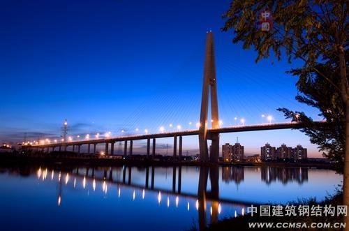 海河处采用主跨跨径310米双索面混合梁独塔斜拉桥