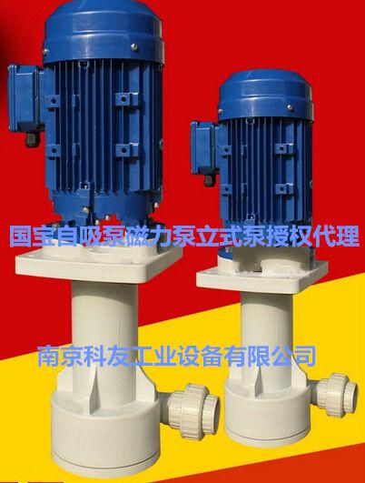 KD-50VK-55NF槽外立式泵昆山国宝泵
